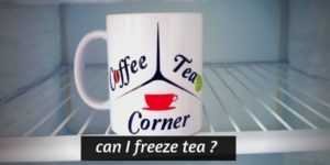 Read more about the article Can You Freeze Tea ? (Both Brewed And Loose Leaf Tea)