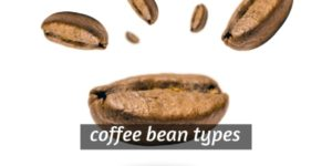 Coffee Bean Types – Geography And Climate In Your Cup Of Joe