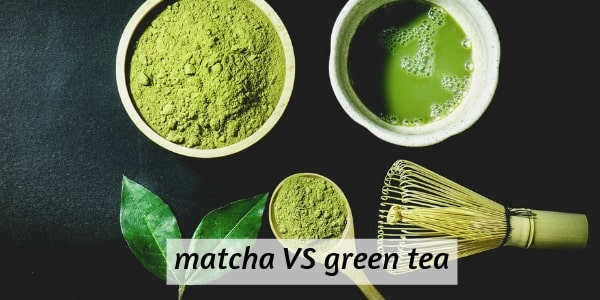 4 Differences Between Matcha And Green Tea You Need To Know