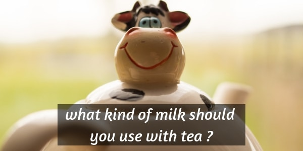 What Kind Of Milk To Use In Tea (Vegan and Non-Vegan Options)