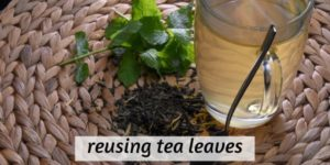 Can You Reuse Tea Leaves ? Getting The Most Out Of Your Tea