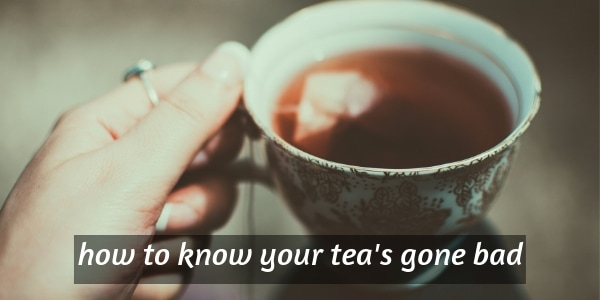 4 Clear Signs Your Tea Is Expired (Or Has Gone Bad)