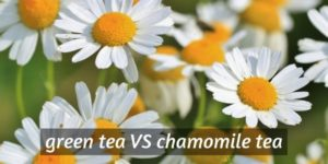 Green Tea VS Chamomile – 6 Differences In Health And Taste
