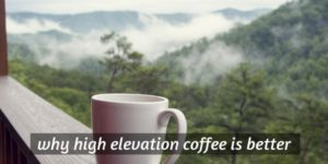 3 Good Reasons High Altitude Coffee Is Better