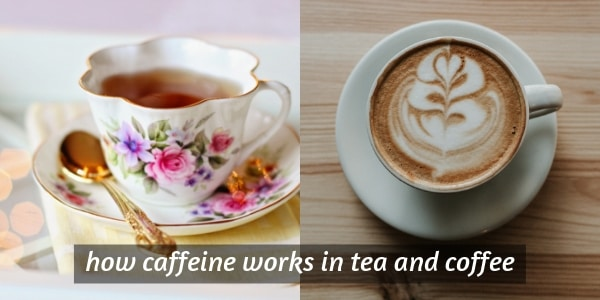 Difference Between Caffeine In Tea And Coffee (How It Works)