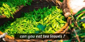 Can You Eat Tea Leaves ? It Might Not Be Worth It, Or Safe