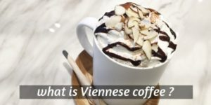Read more about the article What Is Viennese Coffee ? 3 Things That Define It (And Recipe)