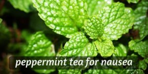 Is Peppermint Tea Good For Nausea ? Here's A Tea You'll Love
