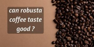 Can Robusta Coffee Taste Good ? In Defense Of The Hardy Bean