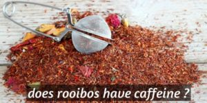 Does Rooibos Have Caffeine ? What This Means For You