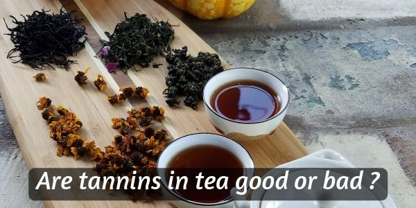 Read more about the article Are Tannins Good Or Bad For You ? Figuring Out If Tea Is Safe