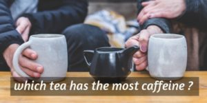 Read more about the article Which Tea Has The Most Caffeine ? (All Tea Types)