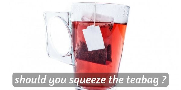 Read more about the article Why You Should Never Squeeze The TeaBag (Solving The Mystery)