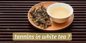 Does White Tea Have Tannins ? Looking At The Most Delicate Tea