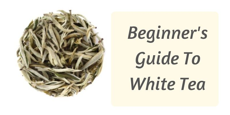 White tea guide