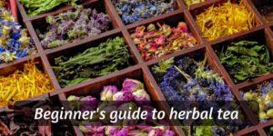 Beginner's Guide To Herbal Tea (Brewing, Ingredients, Variations)
