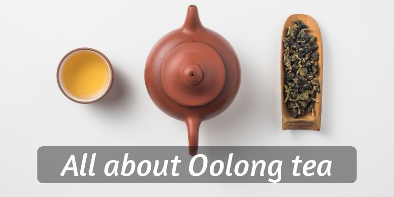 7 Things You Need To Know About Oolong Tea (Essential Guide)