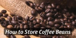 How To Store Coffee Beans – Keeping Your Coffee Fresh
