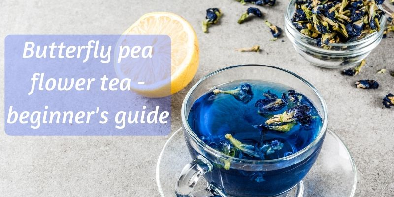 Beginner's Guide To Blue Tea (Butterfly Pea Flower Tea)