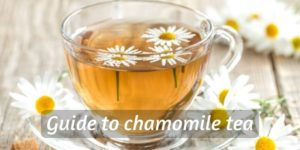 Ultimate Guide To Chamomile Tea (And How To Make A Cup)