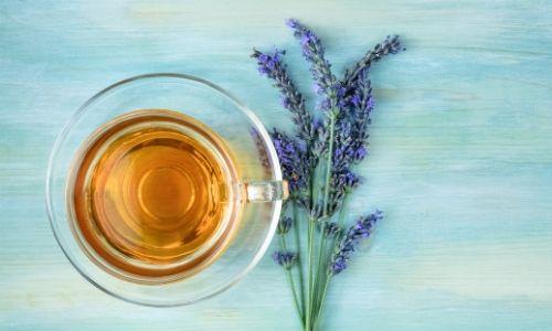 lavender tea (3)