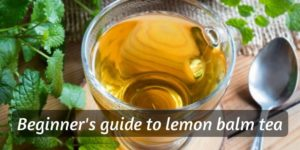 Beginner's Guide To Lemon Balm Tea (And How To Make A Cup)