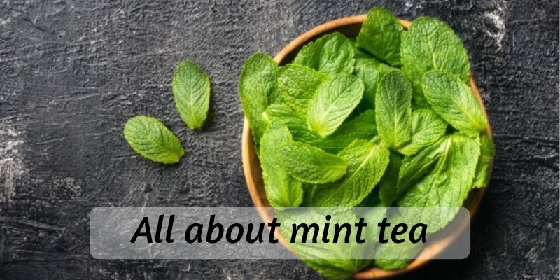 Ultimate Guide To Mint Tea (Recipe Included)