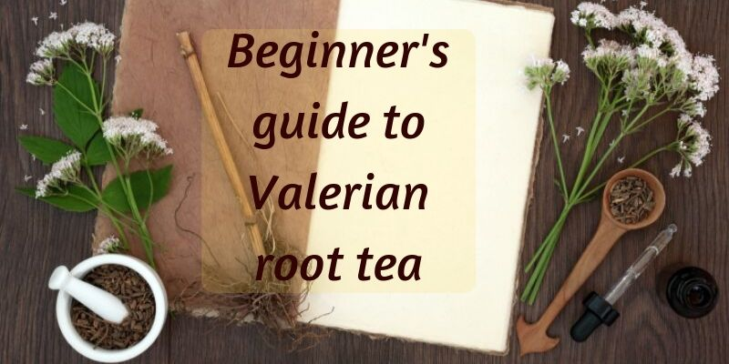Beginner's Guide To Valerian Root Tea (Including Benefits)