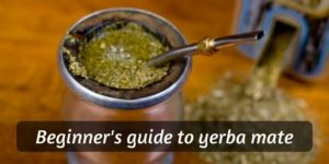 Beginner's Guide to Yerba Mate (Brewing, Taste, Effects)