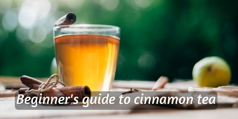 Beginner's Guide To Cinnamon Tea – All About The Spice Tea