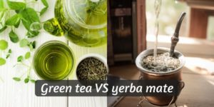 Green Tea VS Yerba Mate – 5 Differences To Pick Your Favorite