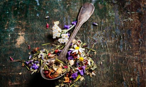 herbal tea (2)