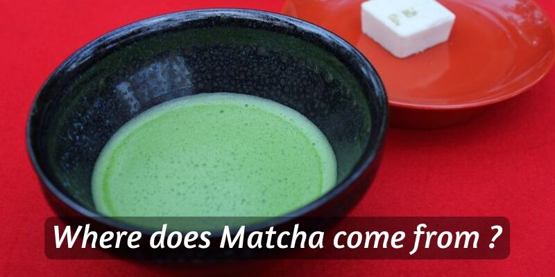 Where Does Matcha Come From ? (Origin Of Matcha Tea Powder)