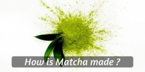 How Is Matcha Made ? From Leaf To Powder, Matcha Explained