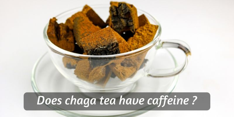 Does Chaga Tea Have Caffeine ? Here's When You Can Drink It