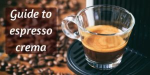 What Is Crema ? The What, How, And Why Of Crema On Espresso