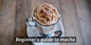 Read more about the article Beginner's Guide To Mocha Coffee – What It Is, And How To Make One