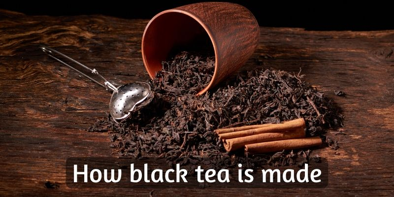How Is Black Tea Made ? Exploring And Explaining The Manufacturing Process