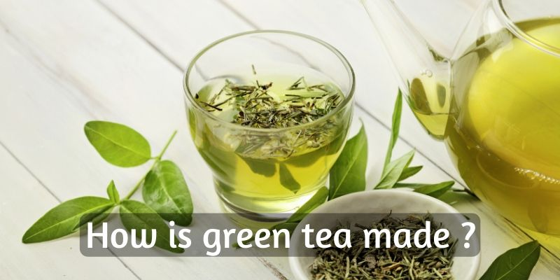 How Is Green Tea Made ? Breaking Down Your Favorite Tea