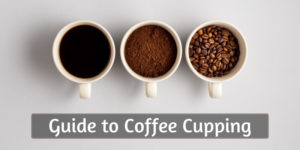 Beginner's Guide To Coffee Cupping